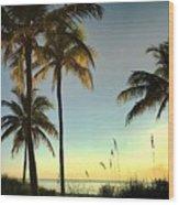 Bright Sunshine Greets The Palms Wood Print