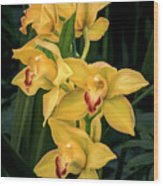 Bright Yellow Orchids Wood Print