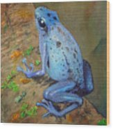 Brilliant Blue Poison Dart Frog Wood Print