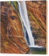 Brilliant Colored Walls Of Utah's Lower Calf Creek Falls. Wood Print