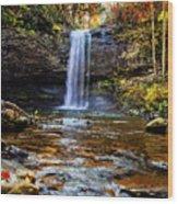 Brilliant Fall Waterfall At Cloudland Canyon Wood Print