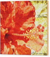 Brilliant Hibiscus Wood Print