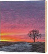 Brilliant Skies Wood Print