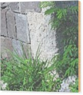 Brimstone Wall Wood Print