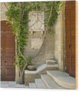 Brindisi- Library Door Wood Print