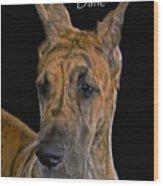 Brindle Great Dane Wood Print by Larry Linton