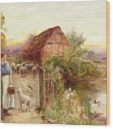 Bringing Home The Sheep Wood Print by Ernest Walbourn