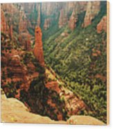 Brins Mesa 07-143 Wood Print
