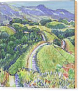 Briones Crest In May, Lafayette, Ca Wood Print