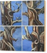 Bristlecone Tree Set Wood Print