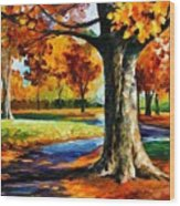 Bristol Fall  Wood Print
