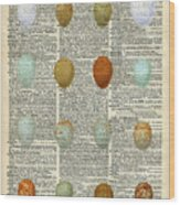British Birds Eggs Wood Print