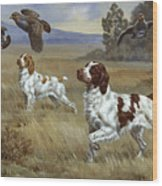 Brittany Spaniels Flush Three Birds Wood Print