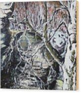 Briza Belokora Wood Print