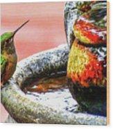 Broad-tailed Hummingbird At Water Fountain Wood Print