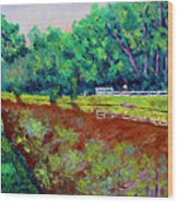 Broadripple Canal Wood Print