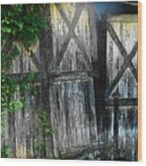 Broken Barn Door Wood Print by Joyce Kimble Smith