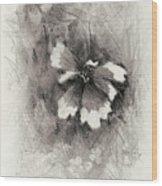 Broken Blossom Wood Print