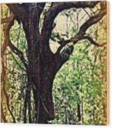 Broken Branch Wood Print