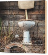 Broken Toilet Wood Print by Carlos Caetano