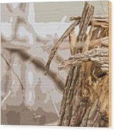 Broken Tree Base Wood Print