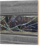 Broken Window Theory Wood Print