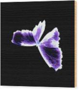 Broken Wing Lavender Butterfly Wood Print