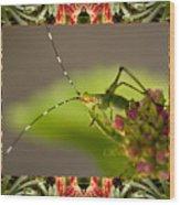Bromeliad Grasshopper Wood Print