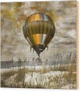Bronze Beach Ballooning Wood Print