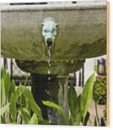 Bronze Civit Head Fountain Wood Print