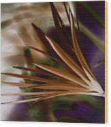 Bronze Ferns Wood Print