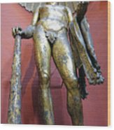 Bronze Statue Of Hercules In The Vatican Museum Wood Print