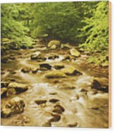 Bronze Stream Wood Print