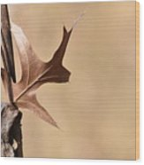 Bronzed Oak Leaf Horizontal Wood Print