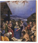 Bronzino Agnolo Painting Wood Print