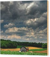 Brooding Sky Wood Print by Lois Bryan