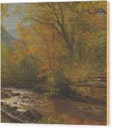 Brook In Woods Wood Print