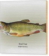 Brook Trout Wood Print
