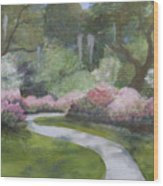 Brookgreen Gardens In Spring Wood Print by Shirley Lawing