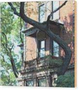 Brooklyn Building And Tree Wood Print