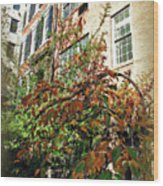Brooklyn In November Wood Print