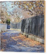 Brooklyn Park In Fall Wood Print