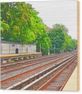 Brooklyn Subway Train Station 1 Wood Print