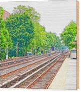Brooklyn Subway Train Station 2 Wood Print