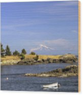 Brooks Point With Mt. Baker Wood Print