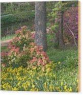 Brookside Gardens 8 Wood Print