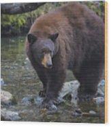 Brother Bear Wood Print