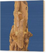 Brother, Carved Out Of A Dead Tree By Scott Alan Malinsky In Twin Lakes, Colorado   Wood Print