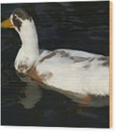 Brown And White Duck Wood Print