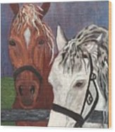 Brown And White Horses Wood Print